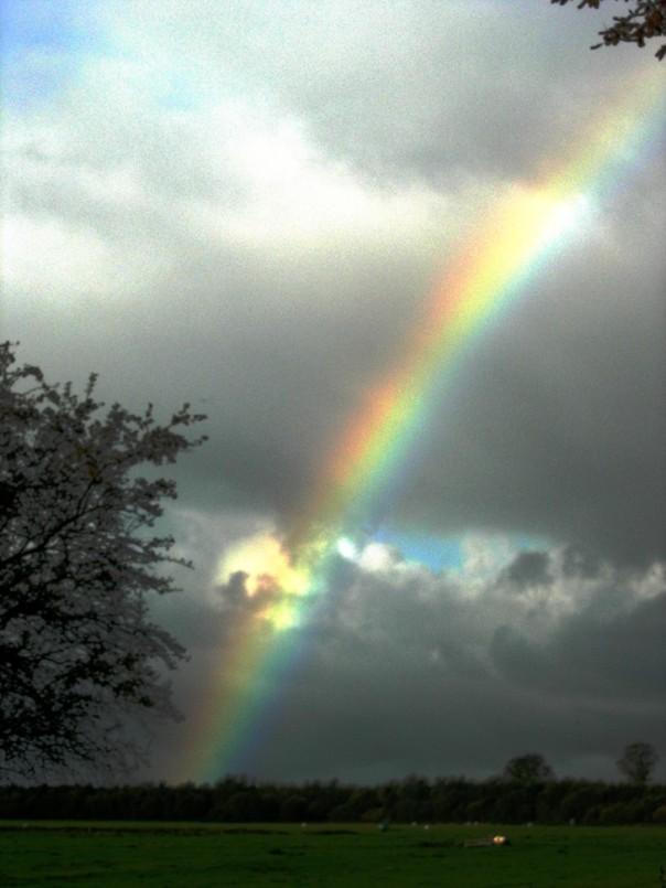 Am Donnerstag leuchtete der Bifröst besonders stark. Es war der Tag des Götterthing!