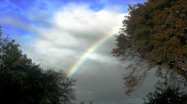 Die Regenbogenbrücke strahlt zwischen den Welten.