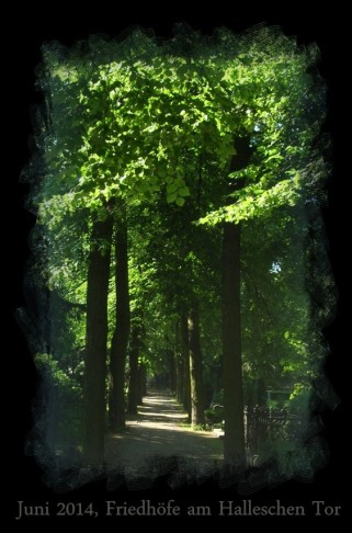 Ein Ausflug in die Stille der Friedhöfe.