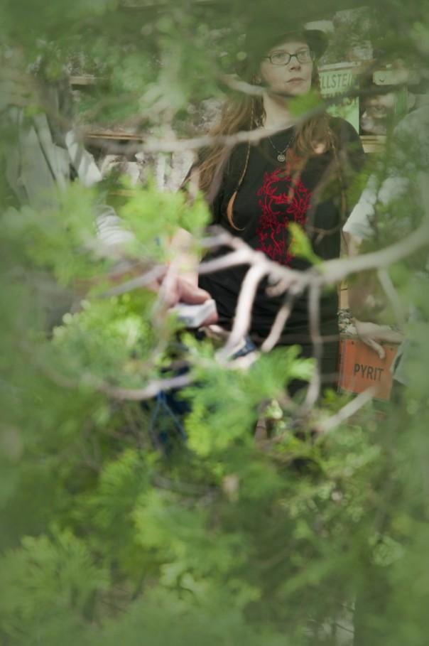 Im Steingarten sollte man nicht den Überblick verlieren! Foto: Thanis Voyant