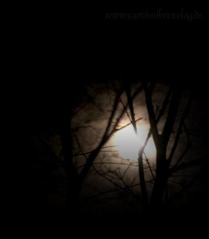 Manche Hexen richten sich beim Feiern des Imbolc-Festes nach dem Mond.