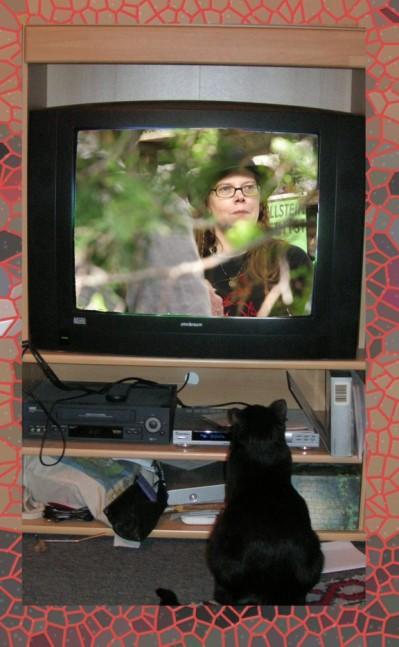 Also, ich hätte Curtis lieber zu Hause auf dem Sofa als im TV!