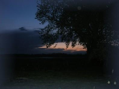 Ein abendlicher Blick in den Garten des Hauses Sternschnuppe.